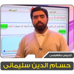 استاد حسام الدین سلیمانی
